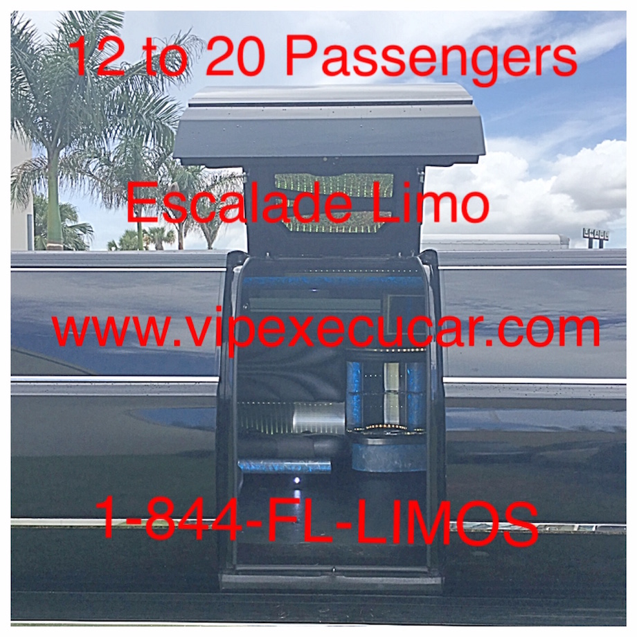 20 Passenger Party Buses. 10 to 20  Passenger party bus rental Ft Lauderdale