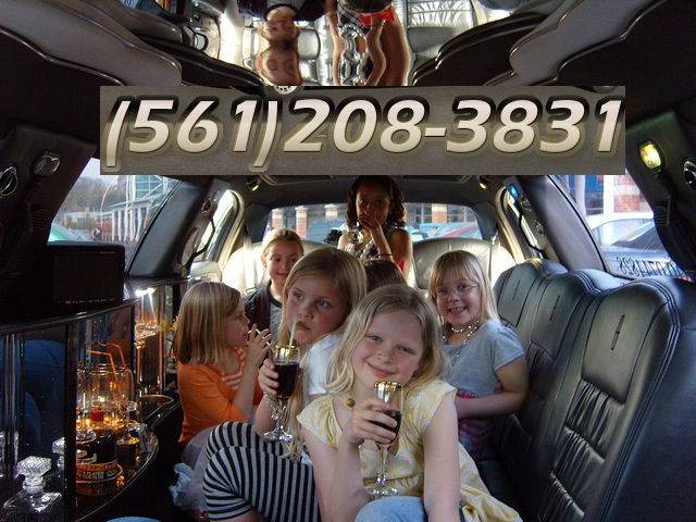VIP Execucar Limousines has been the premier limousine service of Palm Beach County,Florida and the exclusive transportation provider for the luxury Hotel for over many years in Palm BeachFl.