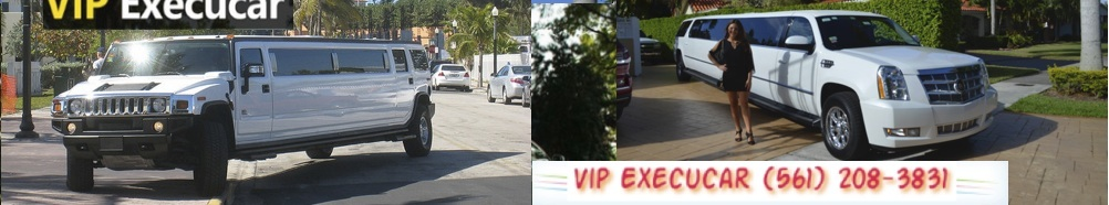 VIP Execucar offers a wide selection of new vehicle options to best meet the needs of our clients and their travel