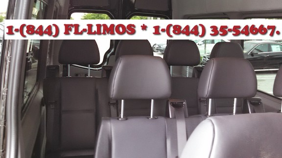 Travel in luxury with Florida Limousines of Miami to the The 2013 Miami Dolphins Football